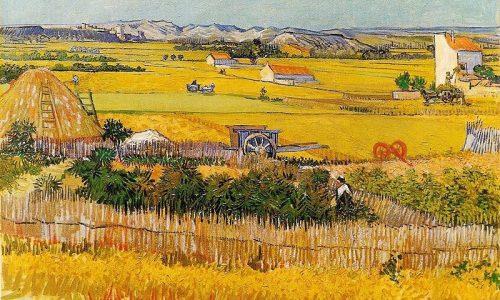 Picture-Story: La pianura della Crau